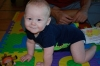 daniel-the-crawler